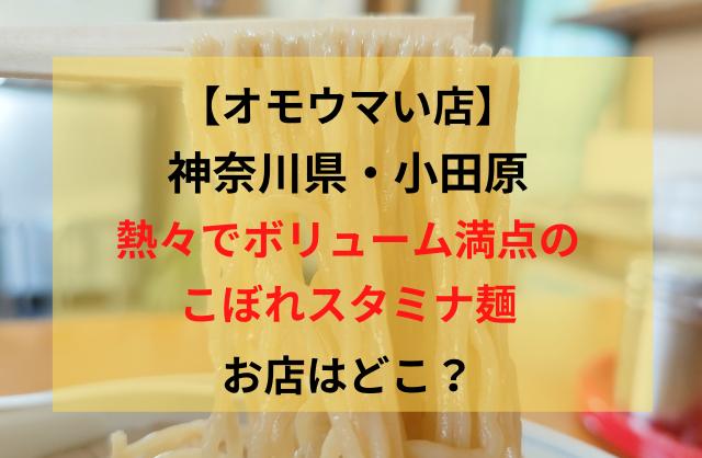 おもうまい店神奈川県小田原市ひろし食堂